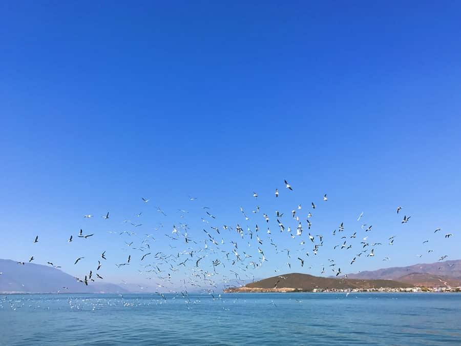 Erhai Lake in China