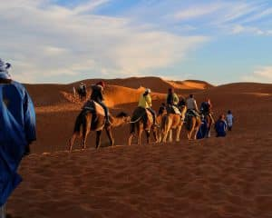 #Sahara Desert
